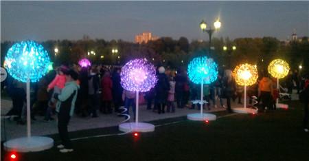 public fiber optic lighting decoration
